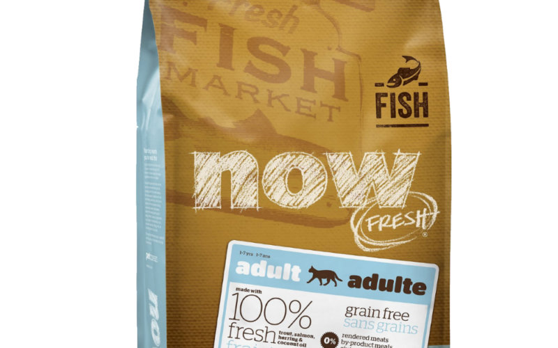 now-fresh-Grain-Free-Adult-Cat-Fish-Recipe
