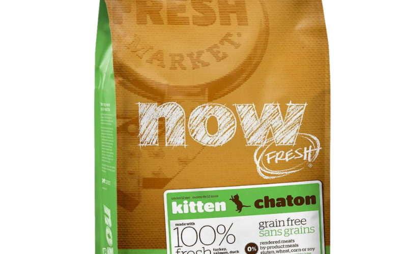 now-fresh-Grain-Free-Kitten-Recipe