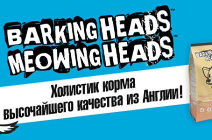 Barking Heads БЕЗ СКИДКИ 1000х300